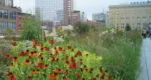 the high line in person garden rant