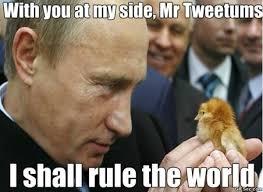 Putin Memes - putin meme viral viral videos