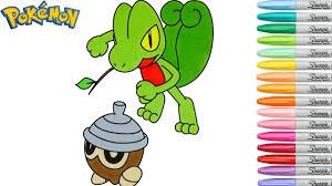 pokemon coloring book pages treecko キモリ seedot タネボー rainbow