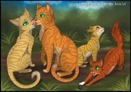 warrior cats family by rukifox on deviantart pitchers of warrior