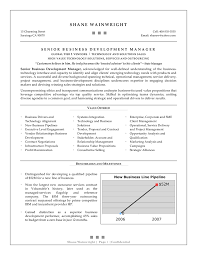Asp Net Sample Resume by Sample Of Cv Business Analyst