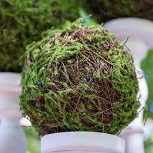 moss ribbon roll of faux moss ribbon wedding party favors and supplies
