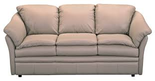 Sleeper Sofa Houston 18 Sleeper Sofa Houston Tx Carehouse Info