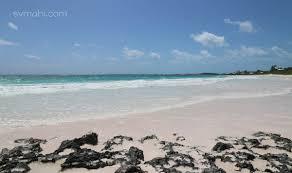 pink sand beach sailing on mahi