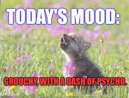 Insanity Wolf Meme Generator - baby insanity wolf memes imgflip