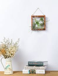 mkono air plant display frame wall mounted wood holder for