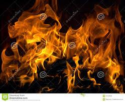 burning fire royalty free stock images image 16723599