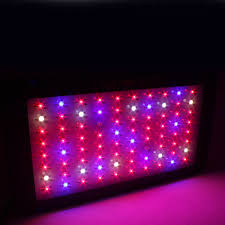 horticultural led grow lights apollo horticulture gl100led full spectrum 300w led grow light for