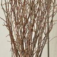Decorative Stems For Vases Decorative Dried Branches Artificial Natural Branches