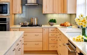 Kitchen Cabinets Light by Praiseworthy Under Cabinet Lighting Puck Vs Strip Tags Under