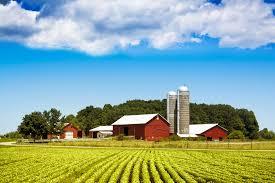 The Health Barn The Health Benefits Of Simple Living Wellness Us News