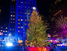 top 7 most beautiful christmas trees in the world archiki