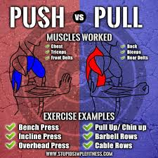 what u0027s the difference between push vs pull workouts infographic