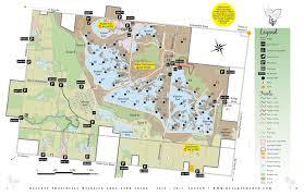 Hummingbird Map Home