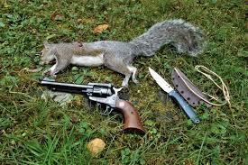 handgun hunting spyderco forums