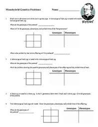Dihybrid Cross Punnett Square Worksheet Free Printable Monohybrid Cross Punnett Square Worksheet For