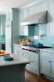 Tile Kitchen Backsplashes Kitchen Design Ideas Refreshing Black Subway Tile On Kitchen With