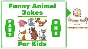 really funny animal jokes for kids u0026 children part 1 youtube