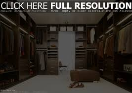 Walk In Closet Designs For A Master Bedroom Bedroom Delectable Design Ideas Of Ikea Teenage Bedroom With