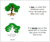 montessori tree printable tree nomenclature book montessori print shop