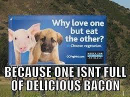 Dog Bacon Meme - aww yiss bacon meme by redneksniper568 memedroid