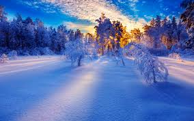 beautiful winter day walldevil