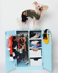 Dog Armoire Furniture Outstanding Pet Dog Clothing Wardrobe Ideas About Pet Life