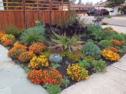 California Landscaping Ideas Save Water With Stunning Drought Resistant Landscaping Solutions