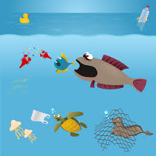 plastinography org how does plastic impact marine life