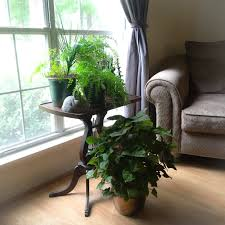 window table for plants savannah e2 80 93 the walden moon use a side table to sit your