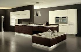 Two Color Kitchen Cabinets Furniture Image Of Classic Two Tone Kitchen Cabinets Two Color