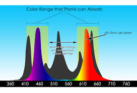 what color light do plants grow best in growing with led led grow world