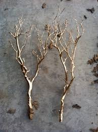 Branches With Lights The 25 Best Twigs Decor Ideas On Pinterest Twig Crafts Stick