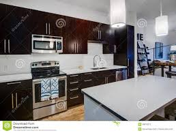 modern apartment kitchen stock photo image of home accent 58819212
