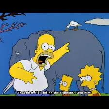 233 best simpsons images on simpsons quotes the