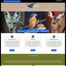 sv3 designs new website for california wildlife center
