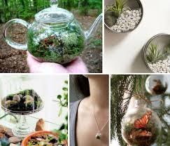 tiny living worlds in glass 12 terrarium ideas webecoist