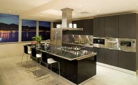cherry wood red lasalle door kitchen island with cooktop