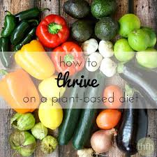 to thrive on a plant based diet the healthy family and home