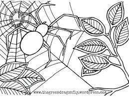 Spider Color Pages Very Colouring Pages The Busy Spider Coloring S Vonsurroquen Me by Spider Color Pages