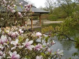 decoration petit jardin déco petit jardin cafe amp bistro bordeaux 1638 bordeaux