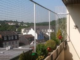 katzennetze balkon katzennetz ohne bohren für balkon katzennetze nrw der