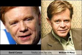 David Caruso Meme - david caruso totally looks like william h macy cheezburger funny