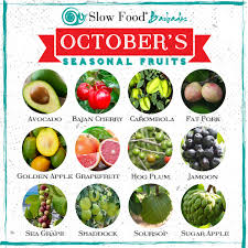fruit of the month october s seasonal fruits