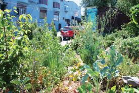 Permaculture Urban Garden City Grown Incentivizing Agriculture In The Urban Environment