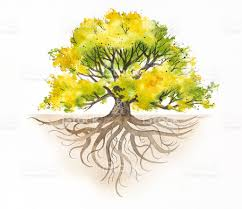 majestic tree with roots stock vector 183358965 istock