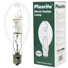 metal halide light color colored metal halide bulbs light bulb surplus