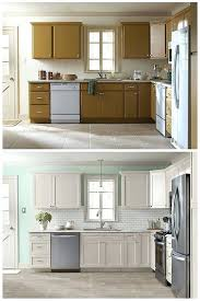 Cabinet Doors For Refacing Replacing Kitchen Cabinets On A Budget Brilliant Kitchen Cabinet