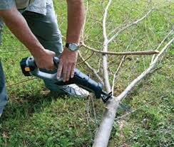 cordless reciprocating saw handy for yard work how to
