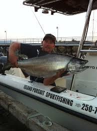 fishing comox island pursuit sport fishing charters